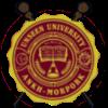 Волшебники и Незримый университет