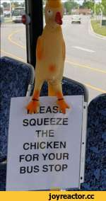 . 'Aij < 1 Y H ¿fev t THE CHICKEN FOR YOUR BUS STOP